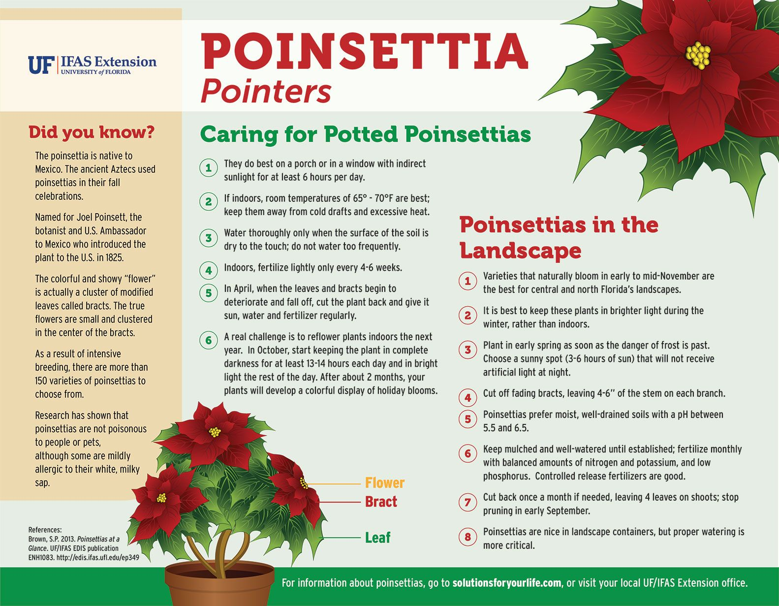Annual Poinsettia Sale Hosted By Uf Student Organization Is An Experiential Learning Model For Other Universities Uf Ifas News Florida Gardening Agricultural Science Infographic