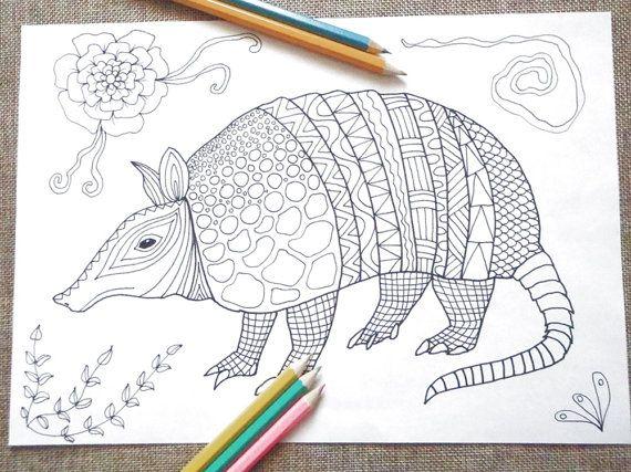 Armadillo Coloring Adults Printable Colouring Kids Totem Animal