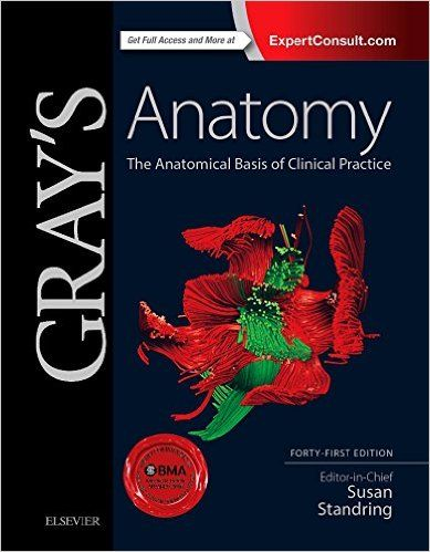 Gray\'s Anatomy 41st Edition PDF has been meticulously revised and ...