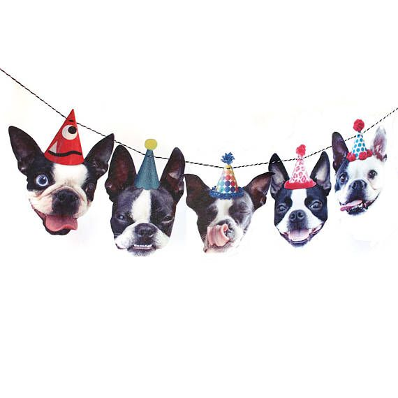 Boston Terrier Dog Birthday Garland Party Decoration For Pet Me
