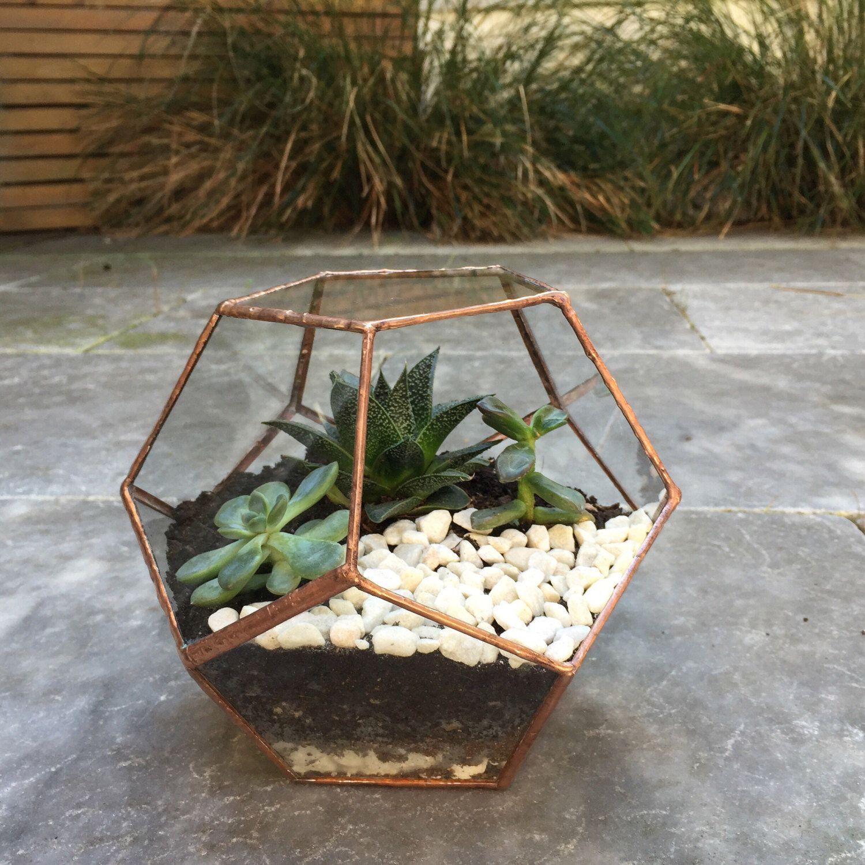 Glass terrarium, pentagon glass container, geometric terrarium planter, succulent  planter, mini greenhouse - Glass Terrarium, Pentagon Glass Container, Geometric Terrarium