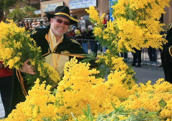 Mimosa Festival in France   South of france, France ...