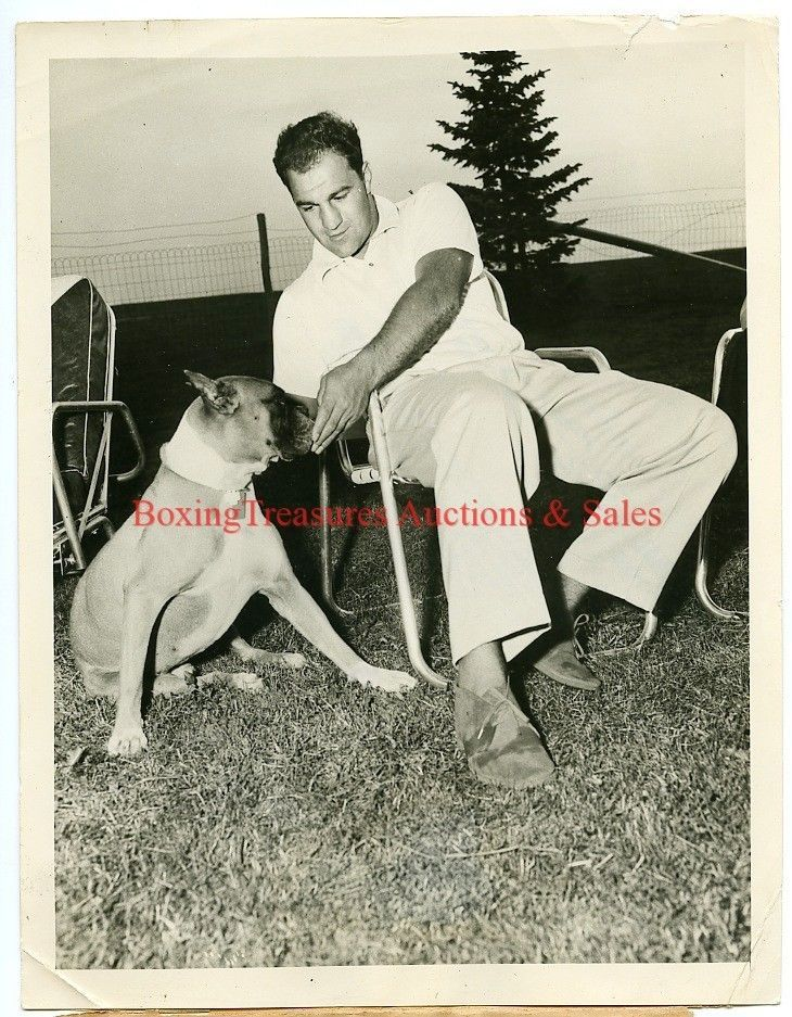 1955 Boxing ROCKY MARCIANO & BOXER DOG Vintage Photograph HEAVYWEIGHT CHAMPION