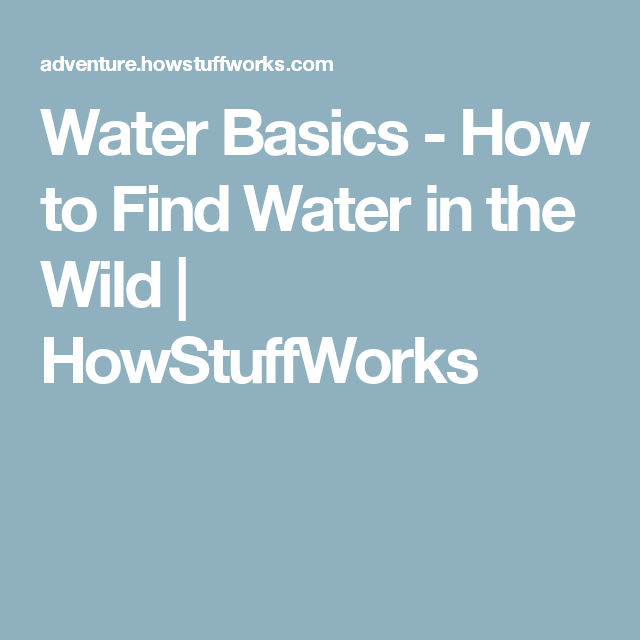 Water Basics - How to Find Water in the Wild | HowStuffWorks