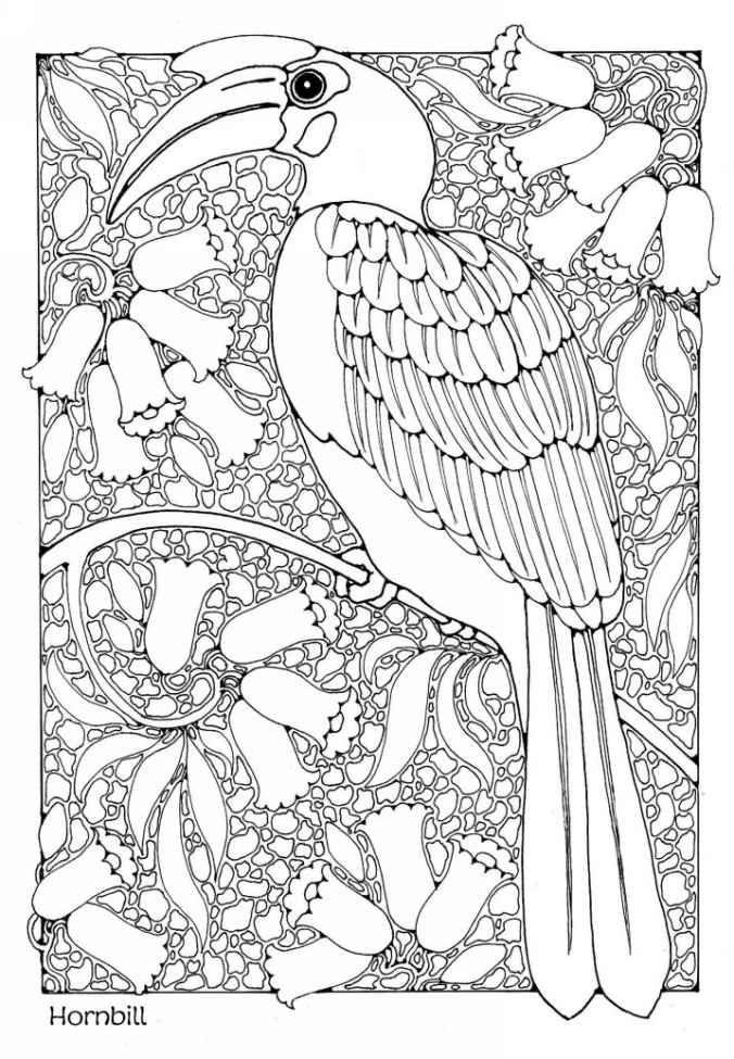 Amazon Com A Colouring Book Of Birds Coloring Books Ebook Dandi Palmer Kindle Store Ausmalen Malen