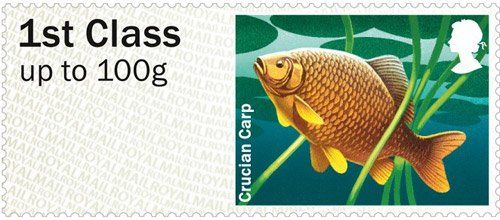 Crucian Carp – 1st class stamp from the Freshwater Life: Lakes Post & Go Stamps, issued 25th June 2013.