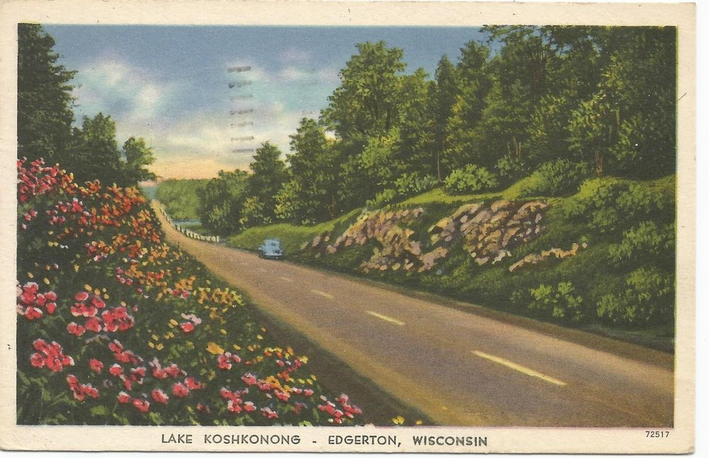 Lake Koshkonong, Wisconsin - Mallard Ducks - Lantern Press