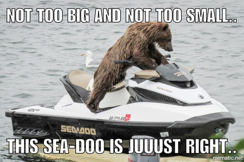 Account Suspended Jet Ski Funny Animals Boat Humor