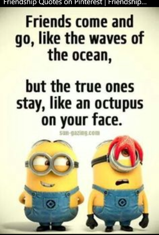Pin By Jeanette Best On Quotes Pinterest Minions Quotes Funny
