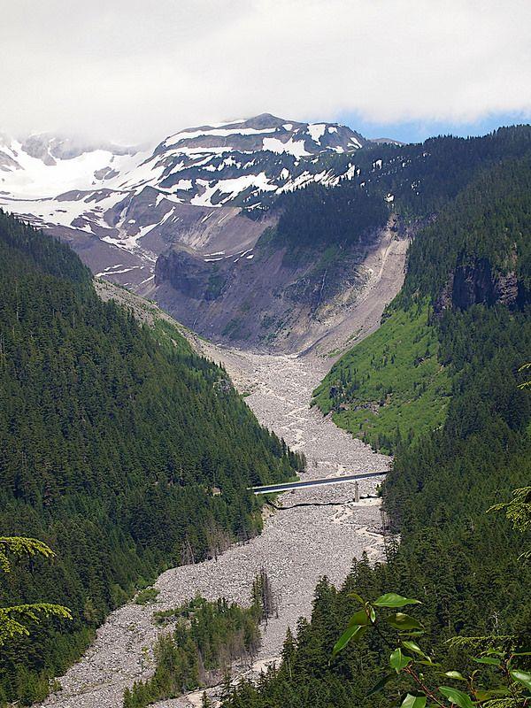 P7037350 Mt Rainier 20130703