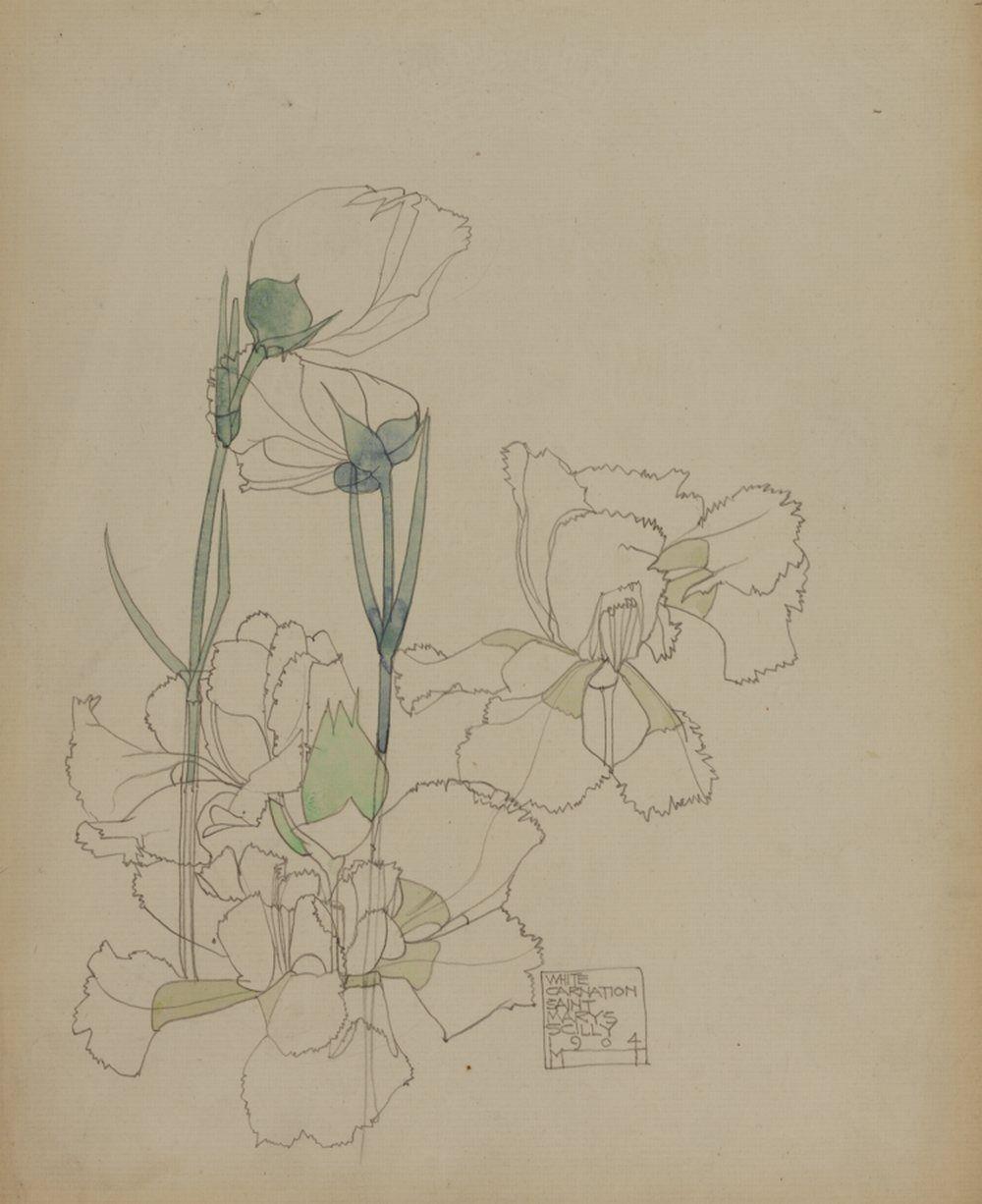 charles rennie mackintosh white carnation st mary 39 s scilly 1904 artist mackintosh charles. Black Bedroom Furniture Sets. Home Design Ideas