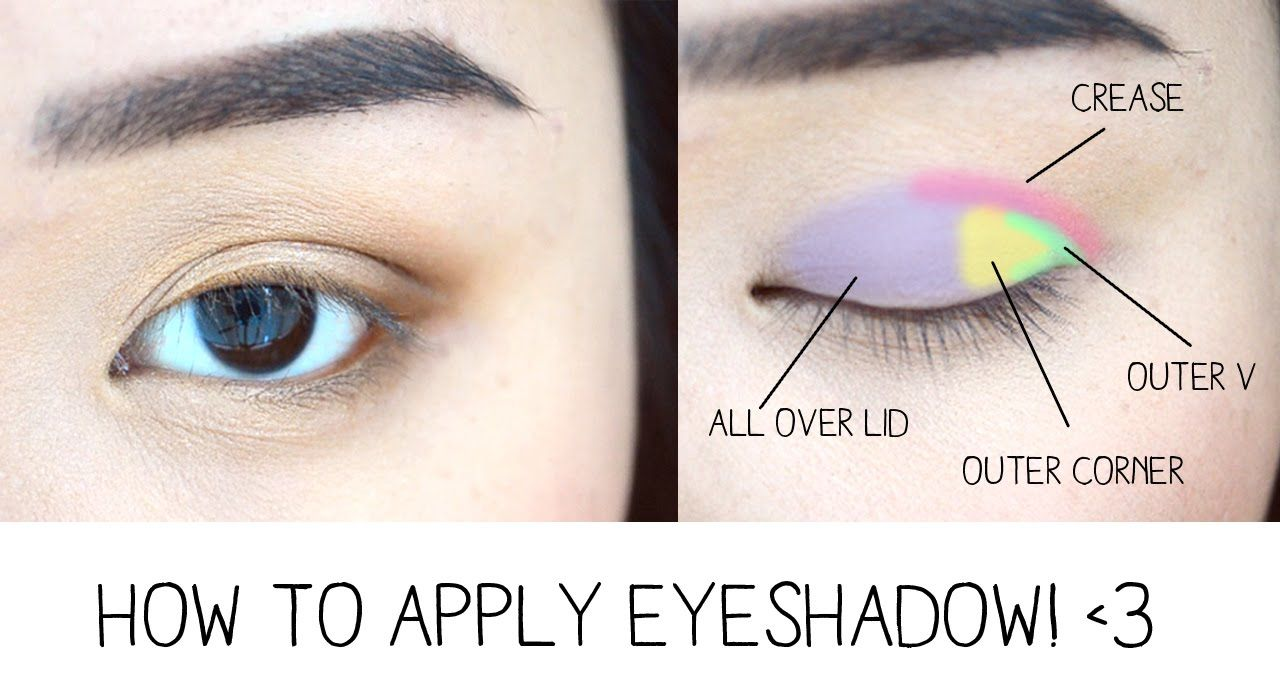 How To Apply Eyeshadow Eye Anatomy How To Apply Eyeshadow