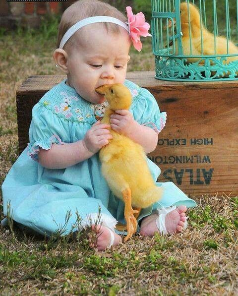 I just wanna give you a kiss Mr. Ducky
