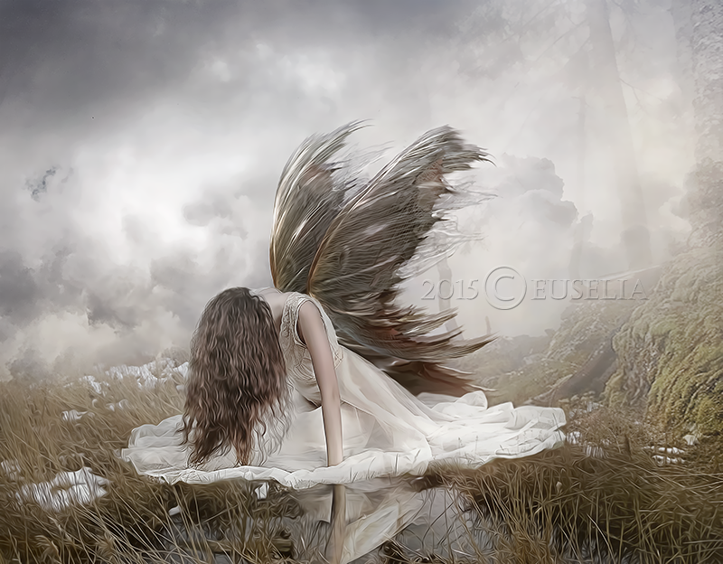 Despair Of An Angel By Euselia On Deviantart  White  Dark Angels