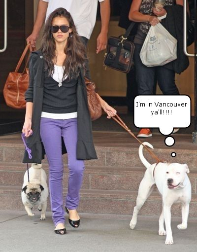 Jessica Steps Out With Her Dogs In Vancouver She Dog Celebrity
