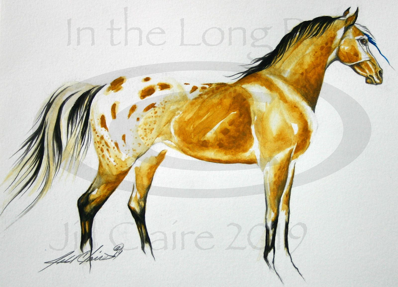 Soldoriginal Buckskin Appaloosa Horse Art Watercolor Etsy Horse Art Horses Equine Art Paintings [ 1154 x 1600 Pixel ]