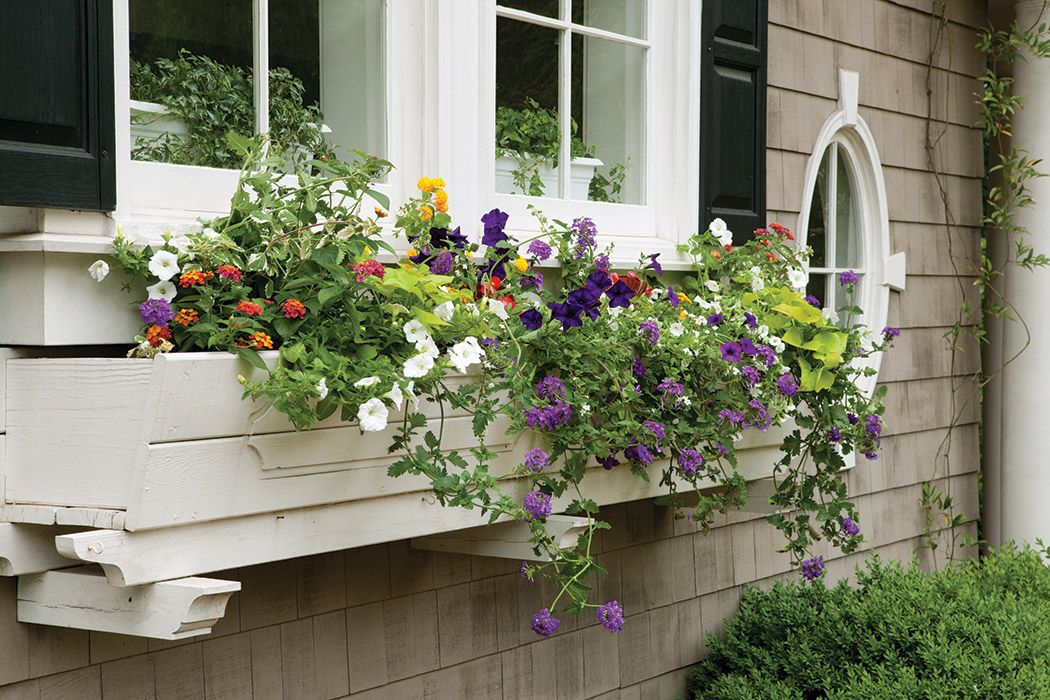 Cottage Style Window Box Ideas Page 2 Of 7 The Journal