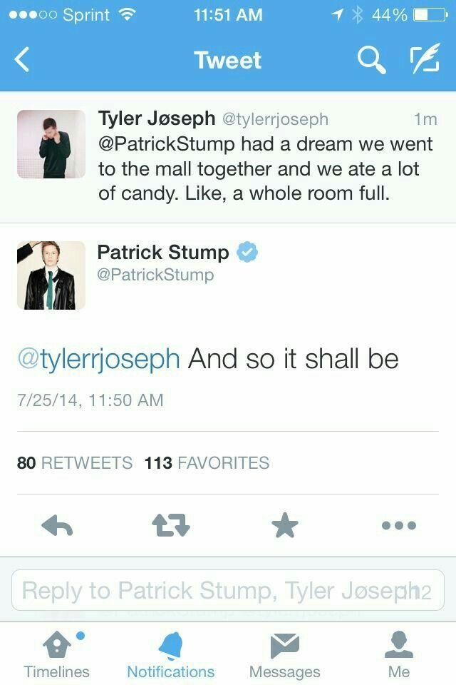 Pin By Your Local Cactus On Fall Out Boy One Pilots Emo Band Memes Fall Out Boy