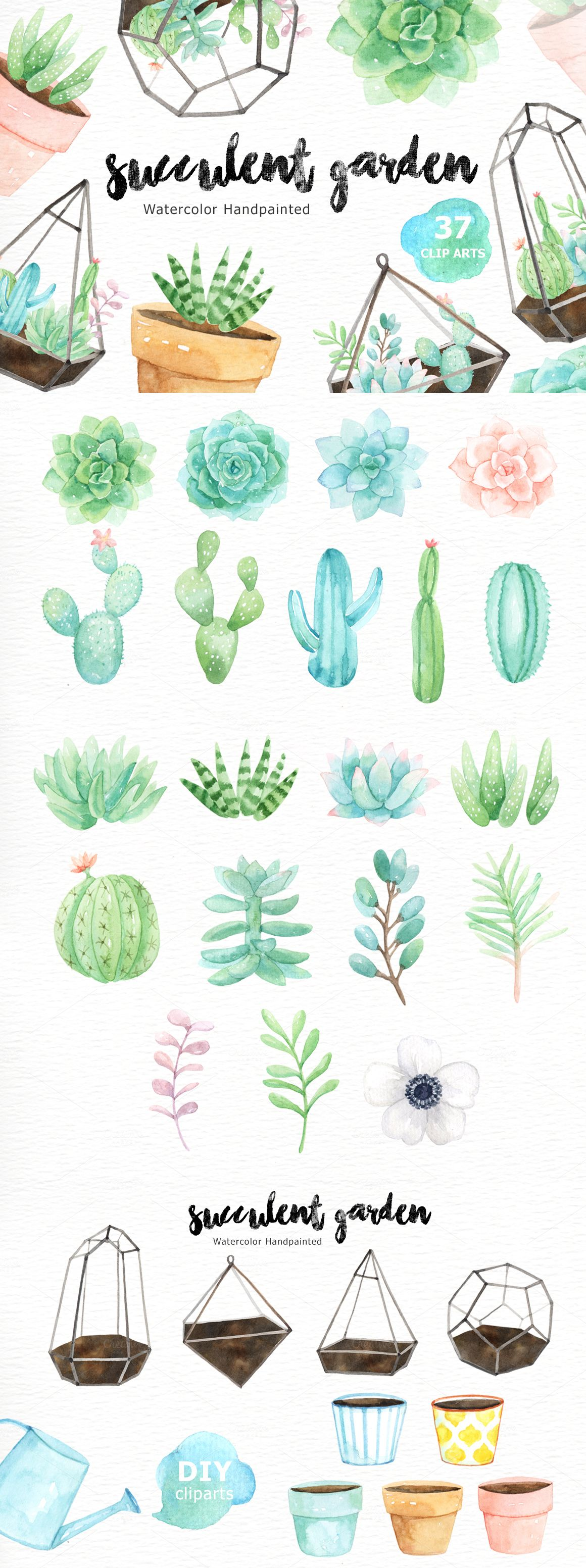 Succulent Garden Watercolor Cliparts By Everysunsun Cute