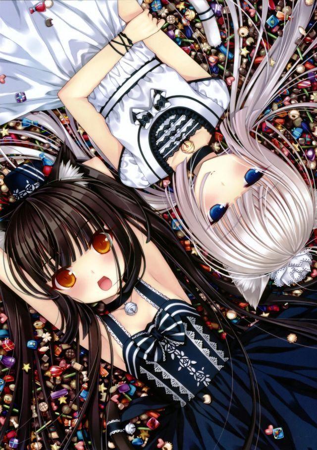 C & V 17 Anime, Anime neko, Neko girl