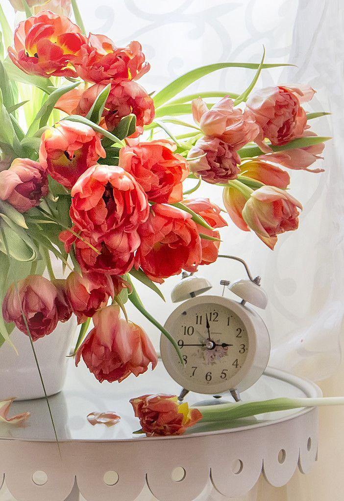 фото ммс доброе утро с цветами праздничный