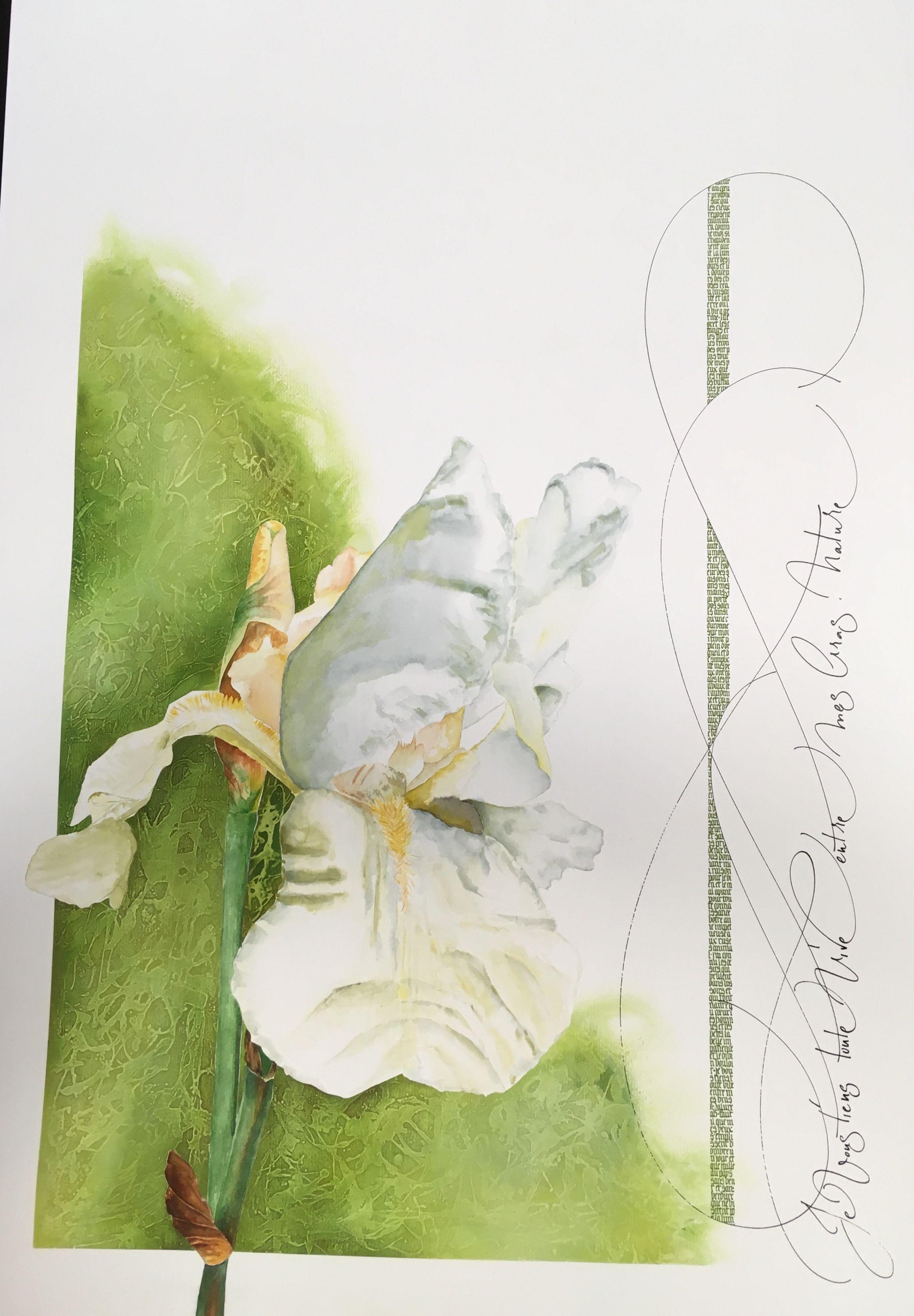 Iris Et Calligraphie 70x100 Cm Aquarelle Et Acrylique