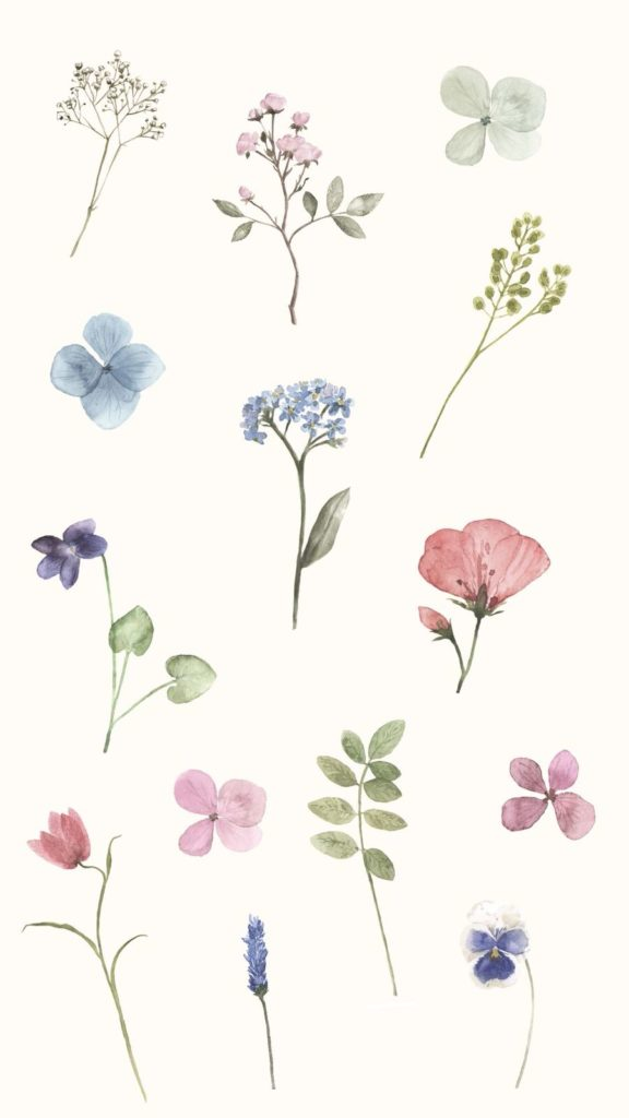 Spring Wallpapers for Your Phone and Computer