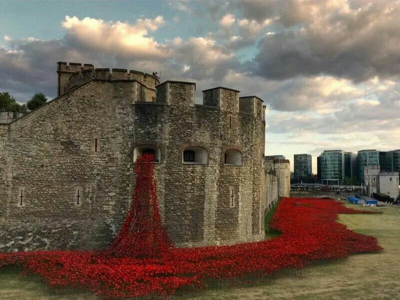 Poppies flowing the tower of London commemorating WWI.