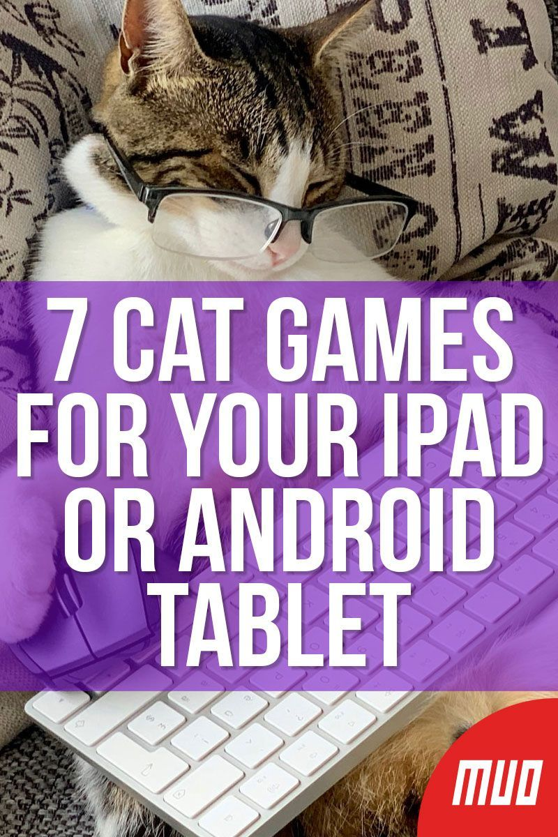 7 Cat Games for Your iPad or Android Tablet in 2020