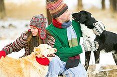 Tipton Luxury Pet Hotel Home Pet Hotel Pets Luxury Pet