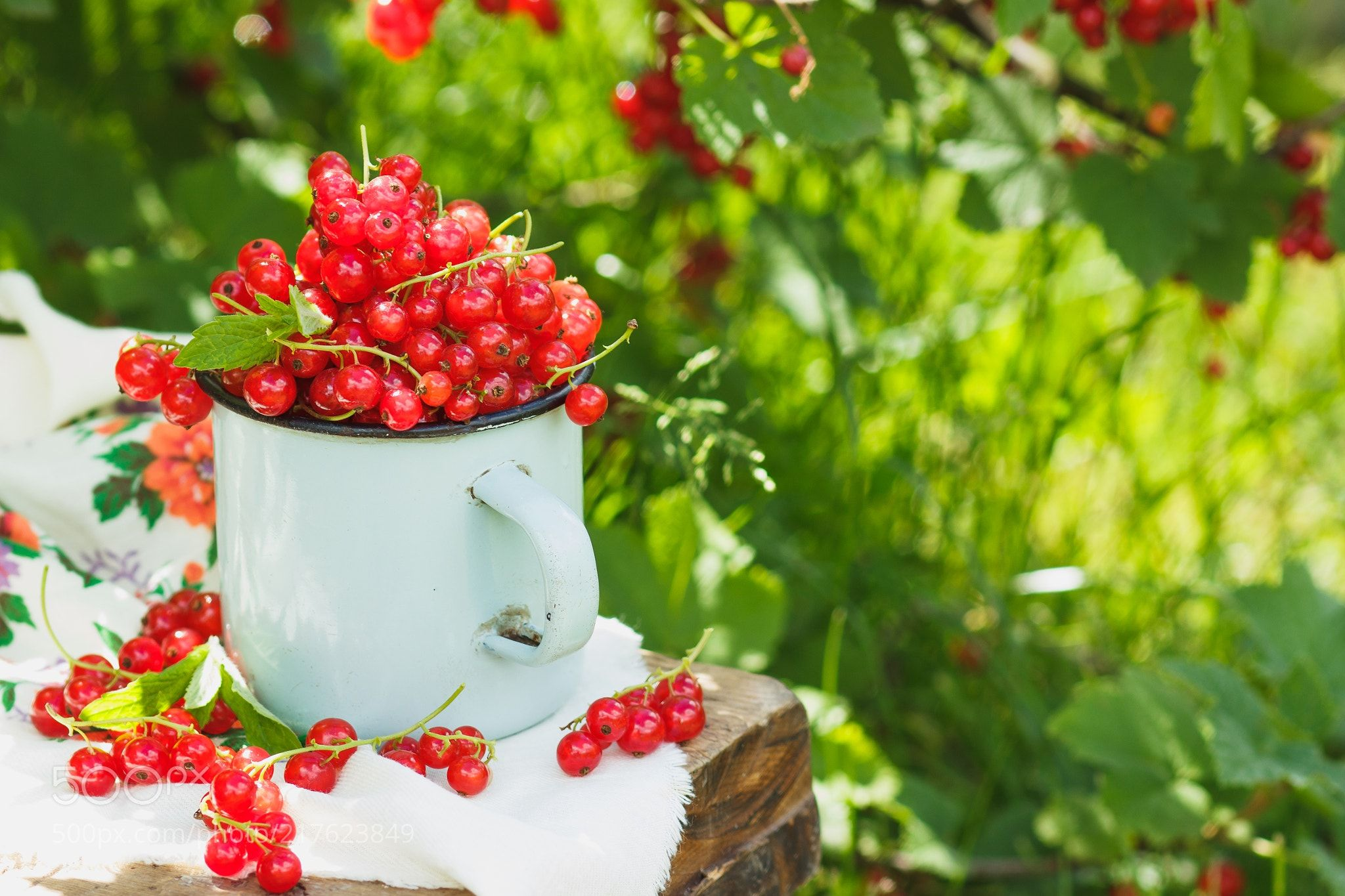 Metal mug with red currant on the table soft focus background