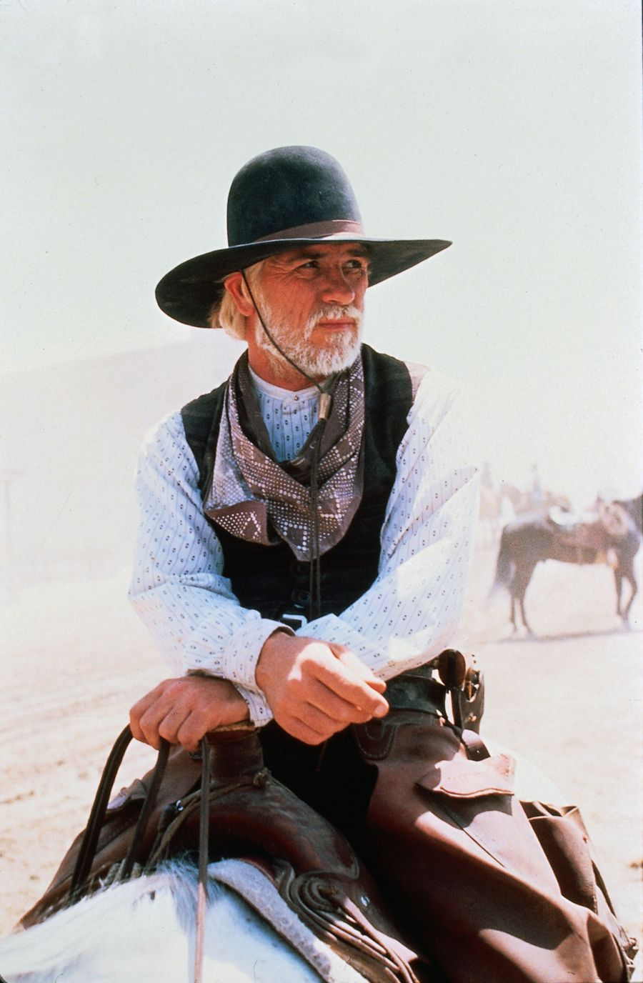 bdda877558af4 Captain Woodrow F. Call - Lonesome Dove