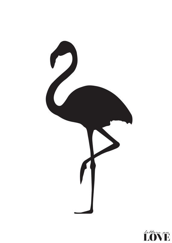 Flamingo Silhouette Black and White Typography by ...