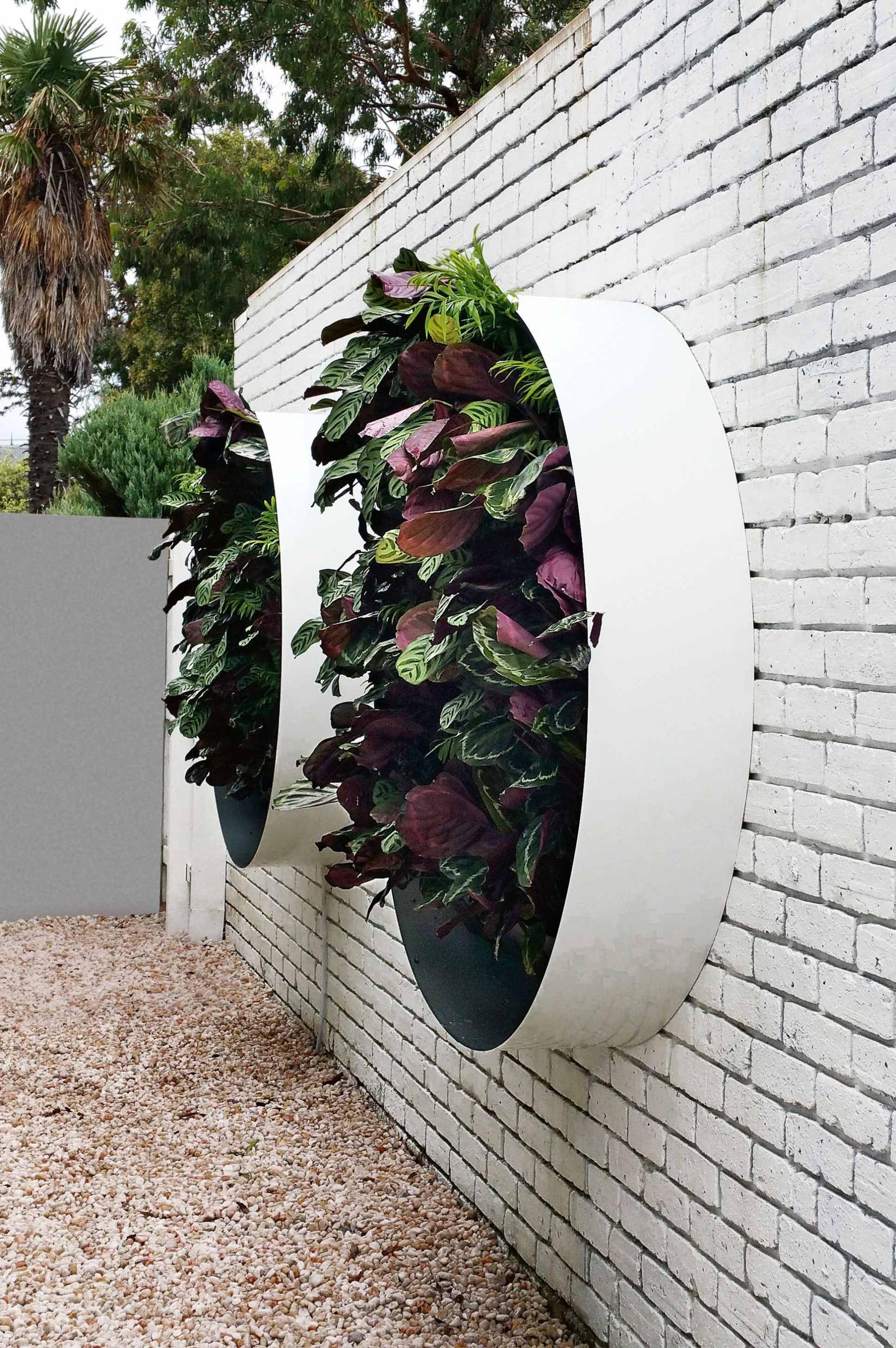 Vertical garden design with orchids space saving backyard landscaping - Creative Inspiring Vertical Gardens Design By Vertical Gardens Australia From The October 2015