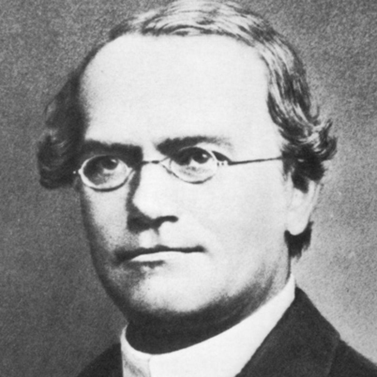 Top 5 Scientists In Biology, Image result for 2. Gregor Mendel (1822-1884)