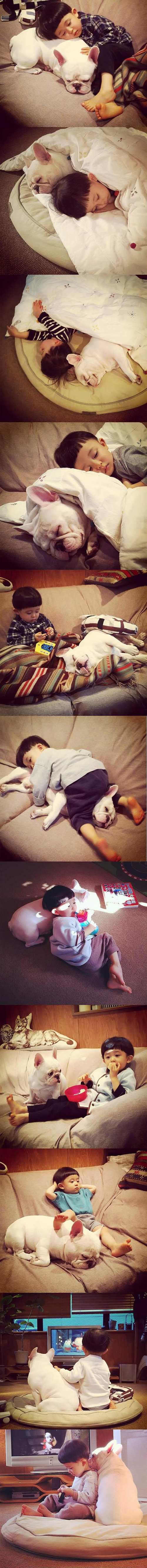 A Beautiful Friendship Between a Kid and is French Bulldog