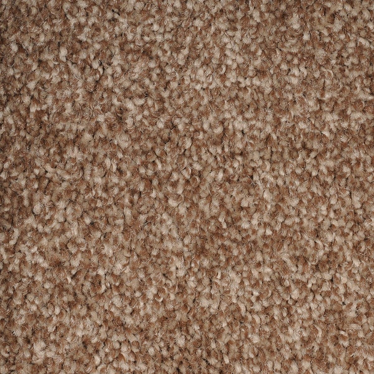 Discount Carpet Cheap Carpet Cheap Carpet Discount Carpet Area Rugs Cheap