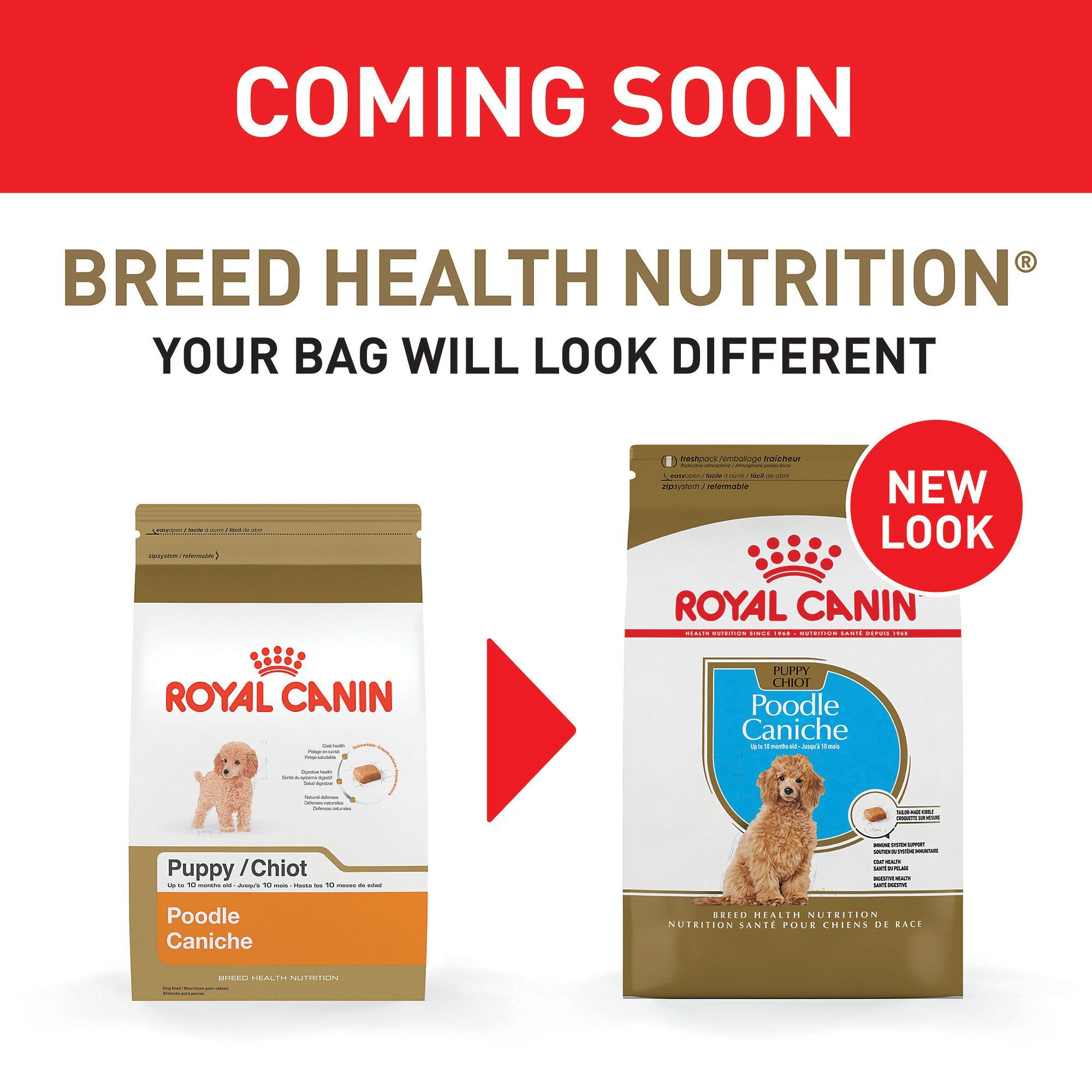 Royal Canin Breed Health Nutrition Poodle Puppy Dry Dog Food 2 5