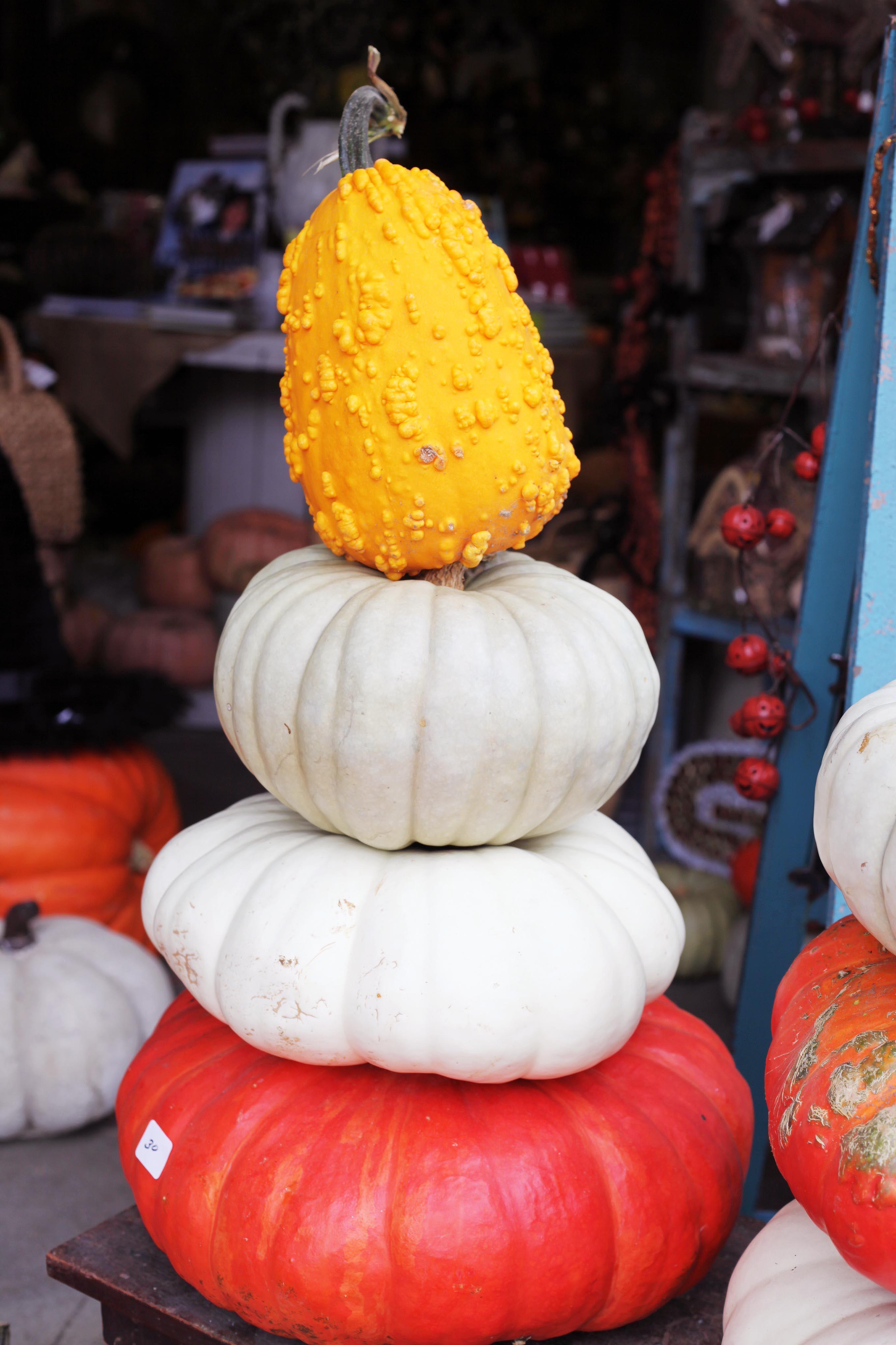 Pumpkin stacks galore fall decor fall at lucyus market pinterest