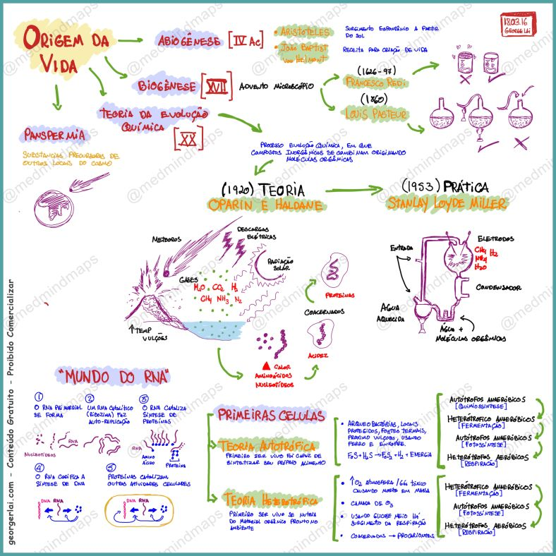 Mind Maps, Biologia, Mapas