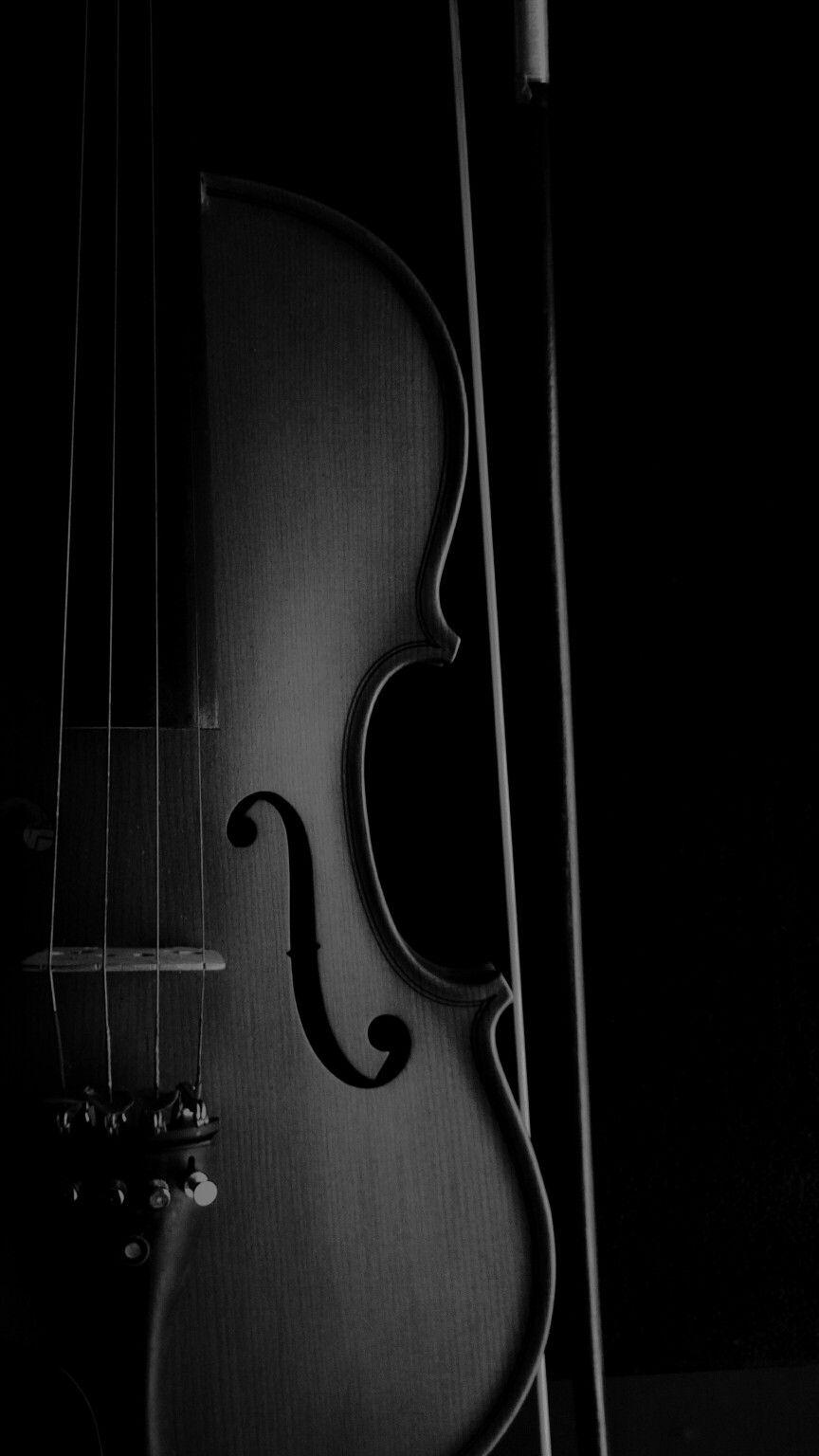 Pin By Dallascowboysgirl 82 On Photography Violin Art Music Wallpaper Black And White Wallpaper