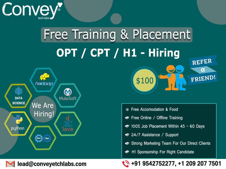 Free Training & Placement..!! Free training, Online