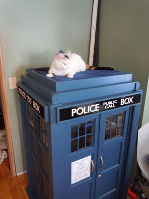 I need a cat just to have an excuse for a Tardis cat playhouse.
