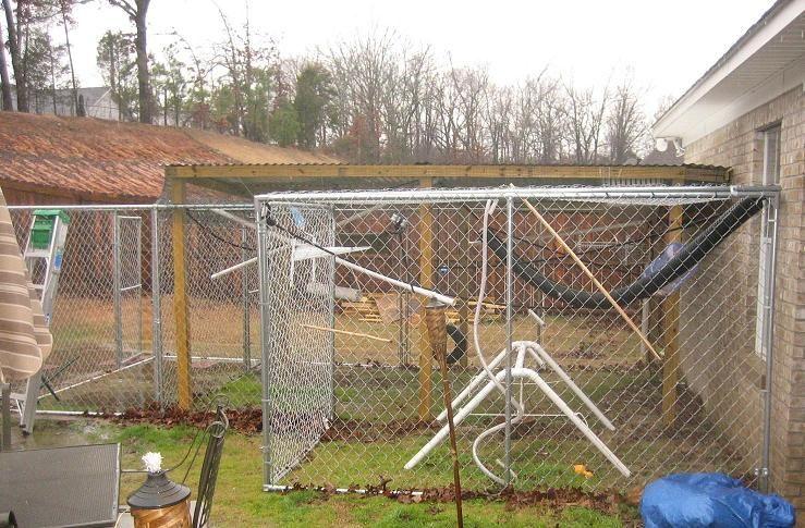 Monkey cage pet capuchin monkey enclosure primate care