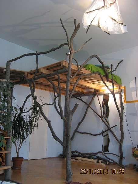 natur hochbett haus pinterest bett hochbett und schlafzimmer. Black Bedroom Furniture Sets. Home Design Ideas