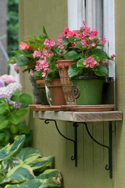 la casa azul decoracion cartagena (official) | jardín, macetas y