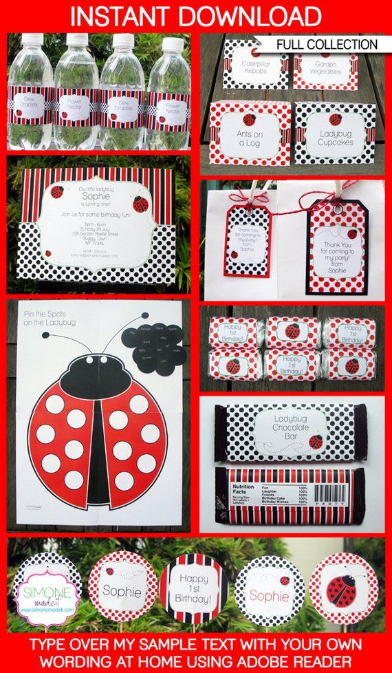 Ladybug Party Invitations Decorations Full Printable Package