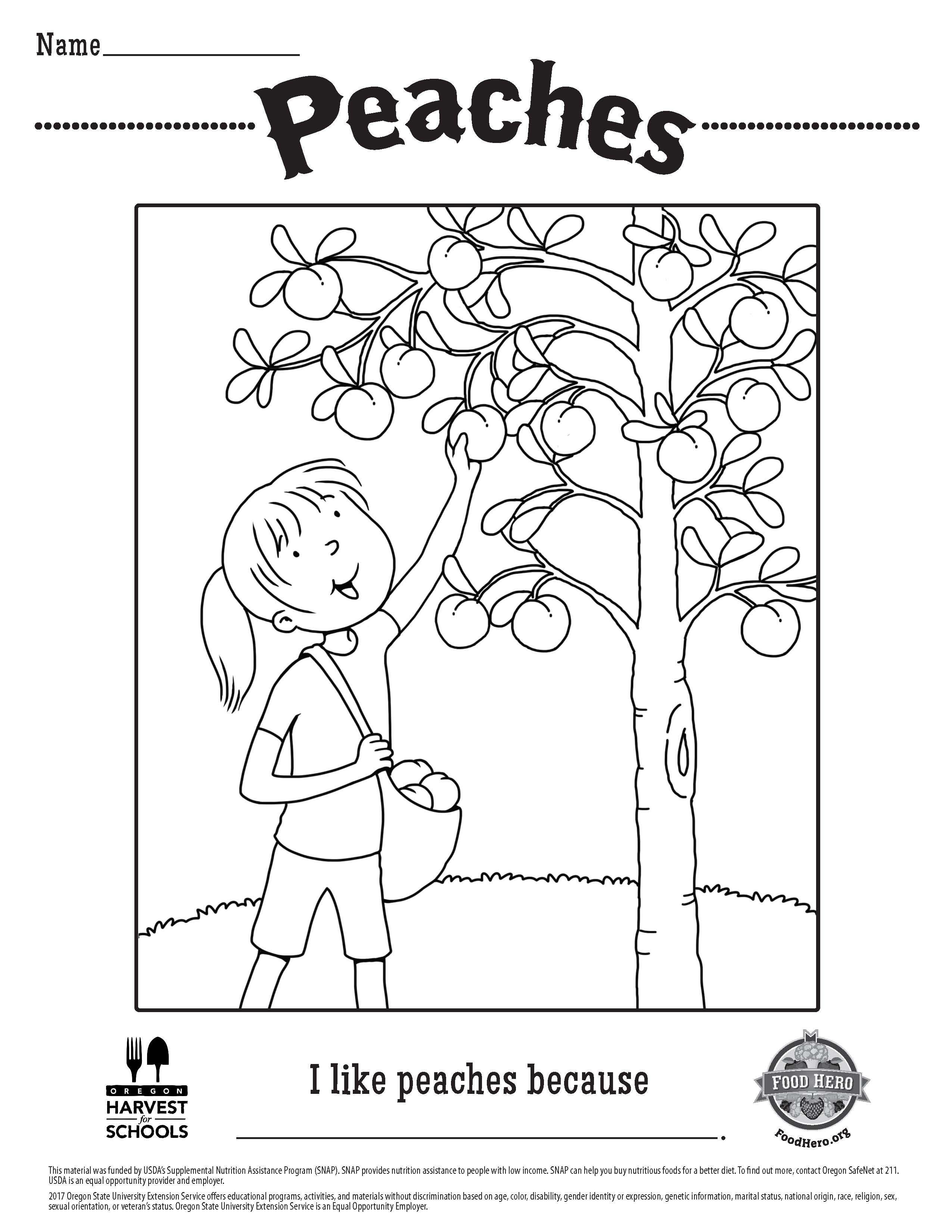 Children S Coloring Sheet Peaches Printable Free Food Hero