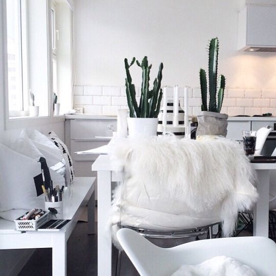 Wild at Heart   Aesthetic room decor, Decor, Aesthetic rooms