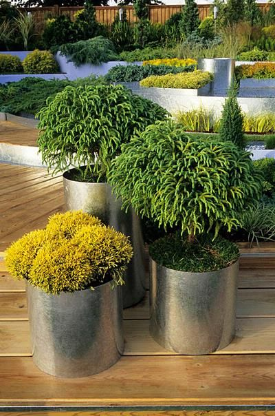 Tall Planters Homebase